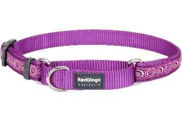 Red Dingo Martingale Collar Cosmos Purple MC-CO-PU