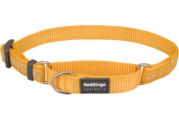 Red Dingo Martingale Collar Cosmos Yellow MC-CO-YE