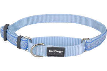 Red Dingo Martingale Collar Daisy Chain Light Blue MC-DC-LB