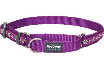 Red Dingo Martingale Collar Daisy Chain Violet MC-DC-PU