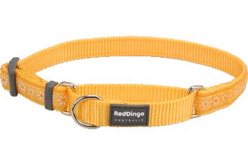 Red Dingo Martingale Collar Daisy Chain Yellow MC-DC-YE