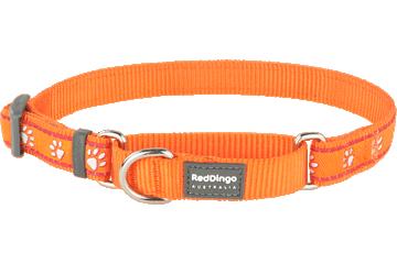 Red Dingo Martingale Collar Desert Paws Orange MC-DP-OR