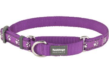 Red Dingo Martingale Collar Desert Paws Purple MC-DP-PU