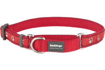 Red Dingo Martingale Collar Desert Paws Red MC-DP-RE