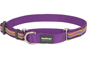 Red Dingo Martingale Collar Dreamstream Purple MC-DS-PU
