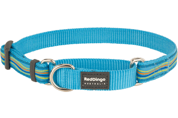 Red Dingo Martingale Collar Dreamstream Turquoise MC-DS-TQ