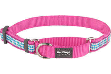 Red Dingo Martingale Collar Fang It Hot Pink MC-FG-HP