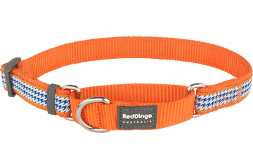 Red Dingo Martingale Collar Fang It Orange MC-FG-OR