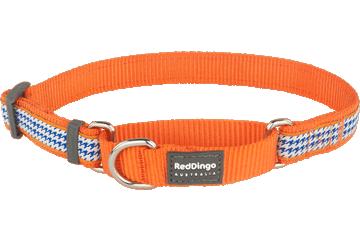 Red Dingo Martingale Collar Fang It Orange MC-FG-OR