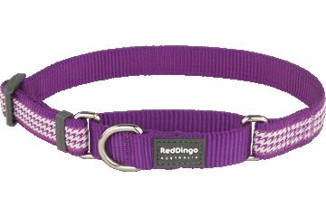 Red Dingo Martingale Collar Fang It Purple MC-FG-PU