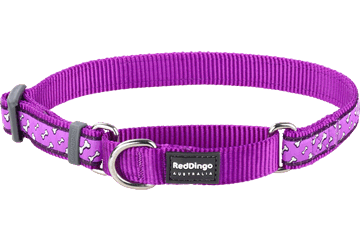 Red Dingo Martingale Collar Flying Bones Purple MC-FL-PU
