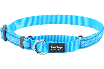 Red Dingo Martingale Collar Flying Bones Turquoise MC-FL-TQ