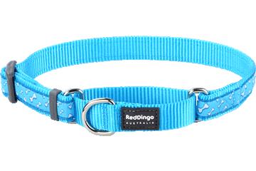 Red Dingo Martingale Collar Flying Bones Turquoise MC-FL-TQ