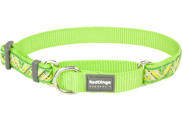 Red Dingo Martingale Collar Flanno Lime Green MC-FN-LG