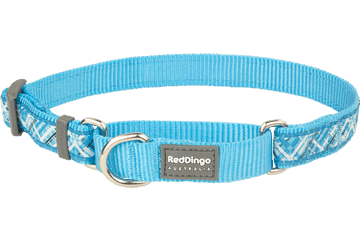 Red Dingo Martingale Collar Flanno Turquoise MC-FN-TQ