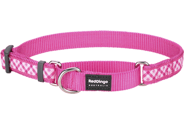 Red Dingo Martingale Collar Gingham Hot Pink MC-GI-HP