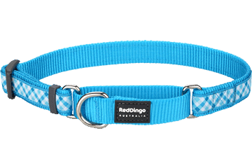 Red Dingo Martingale Collar Gingham Turquoise MC-GI-TQ