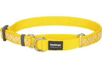 Red Dingo Martingale Collar Gingham Yellow MC-GI-YE