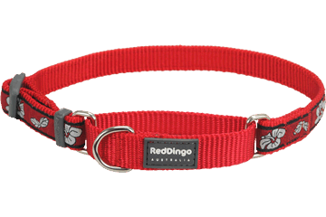 Red Dingo Zug-Stop Halsband Hibiscus Rot MC-HI-RE