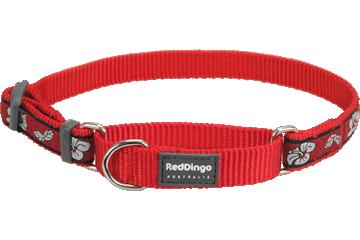 Red Dingo Martingale Collar Hibiscus Red MC-HI-RE
