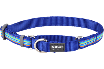 Red Dingo Martingale Collar Horizontal Stripes Dark Blue MC-HO-DB