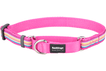 Red Dingo Martingale Collar Horizontal Stripes Hot Pink MC-HO-HP