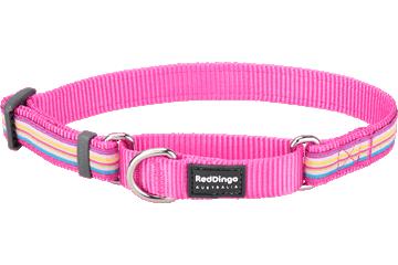 Red Dingo Martingale Collar Horizontal Stripes Hot Pink MC-HO-HP