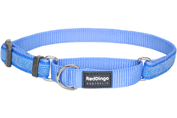 Red Dingo Martingale Collar Hypno Medium Blue MC-HY-MB