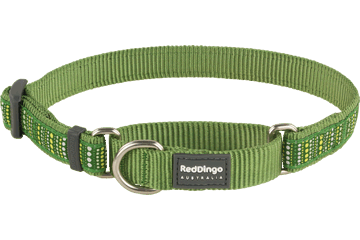 Red Dingo Martingale Collar Lotzadotz Green MC-LD-GR