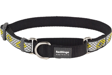 Red Dingo Martingale Collar Monty Black MC-MY-BB
