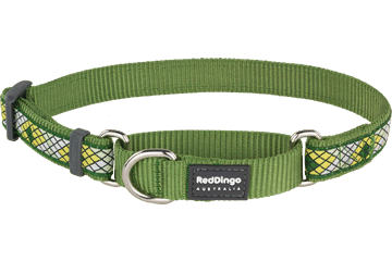 Red Dingo Martingale Collar Monty Green MC-MY-GR