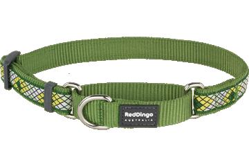 Red Dingo Martingale Collar Monty Green MC-MY-GR