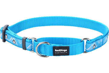 Red Dingo Martingale Collar Penguin Turquoise MC-PE-TQ