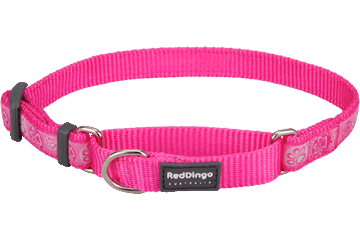 Red Dingo Martingale Collar Paw Impressions Hot Pink MC-PI-HP