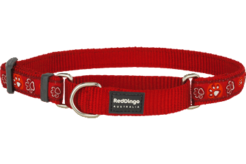 Red Dingo Martingale Collar Paw Impressions Red MC-PI-RE