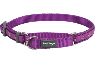 Red Dingo Martingale Collar Paw Prints Purple MC-PP-PU