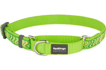 Red Dingo Martingale Collar Pizzazz Lime Green MC-PZ-LG