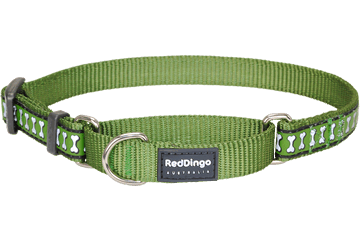 Red Dingo Martingale Collar Reflective Bones Green MC-RB-GR