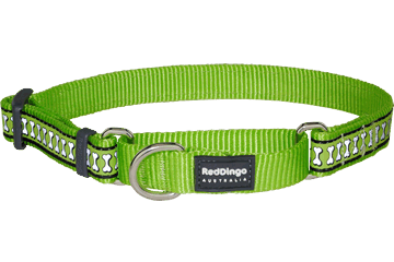 Red Dingo Martingale Collar Reflective Bones Lime Green MC-RB-LG