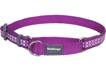Red Dingo Martingale Collar Reflective Bones Purple MC-RB-PU