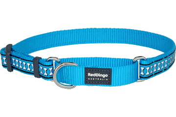 Red Dingo Martingale Collar Reflective Bones Turquoise MC-RB-TQ