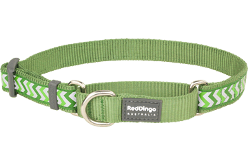 Red Dingo Martingale Collar Reflective Ziggy Green MC-RZ-GR