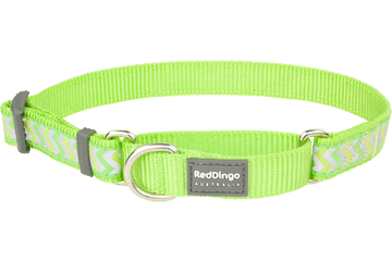 Red Dingo Martingale Collar Reflective Ziggy Lime Green MC-RZ-LG