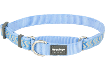 Red Dingo Martingale Collar Reflective Ziggy Medium Blue MC-RZ-MB