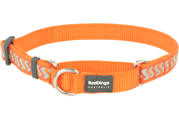 Red Dingo Martingale Collar Reflective Ziggy Orange MC-RZ-OR