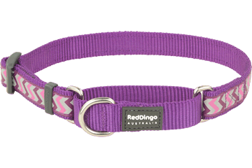 Red Dingo Martingale Collar Reflective Ziggy Purple MC-RZ-PU