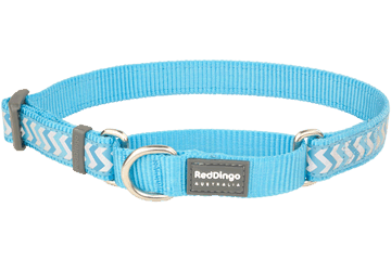 Red Dingo Martingale Collar Reflective Ziggy Turquoise MC-RZ-TQ