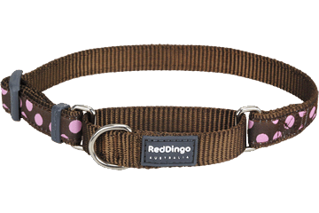 Red Dingo Martingale Collar Pink Spots Brown MC-S1-BR