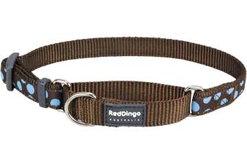 Red Dingo Martingale Collar Blue Spots Brown MC-S2-BR