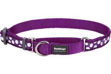 Red Dingo Martingale Collar White Spots Purple MC-S5-PU